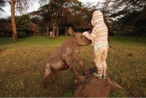 godupdates-tiva-and-lola-little-girl-gets-rhino-instead-of-puppy-8
