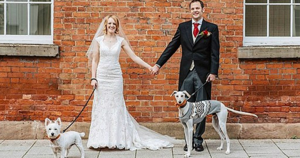 godupdates thinnest dog walks woman who rescued him down aisle 1