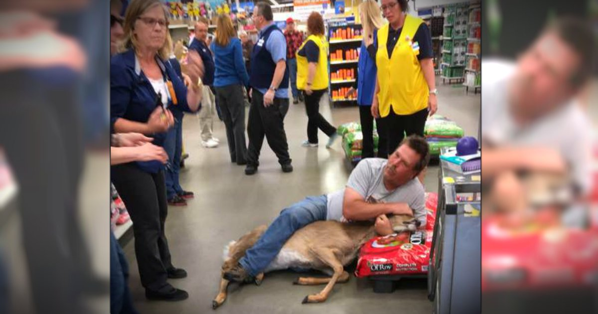 godupdates man wrestled a stray deer at walmart fb