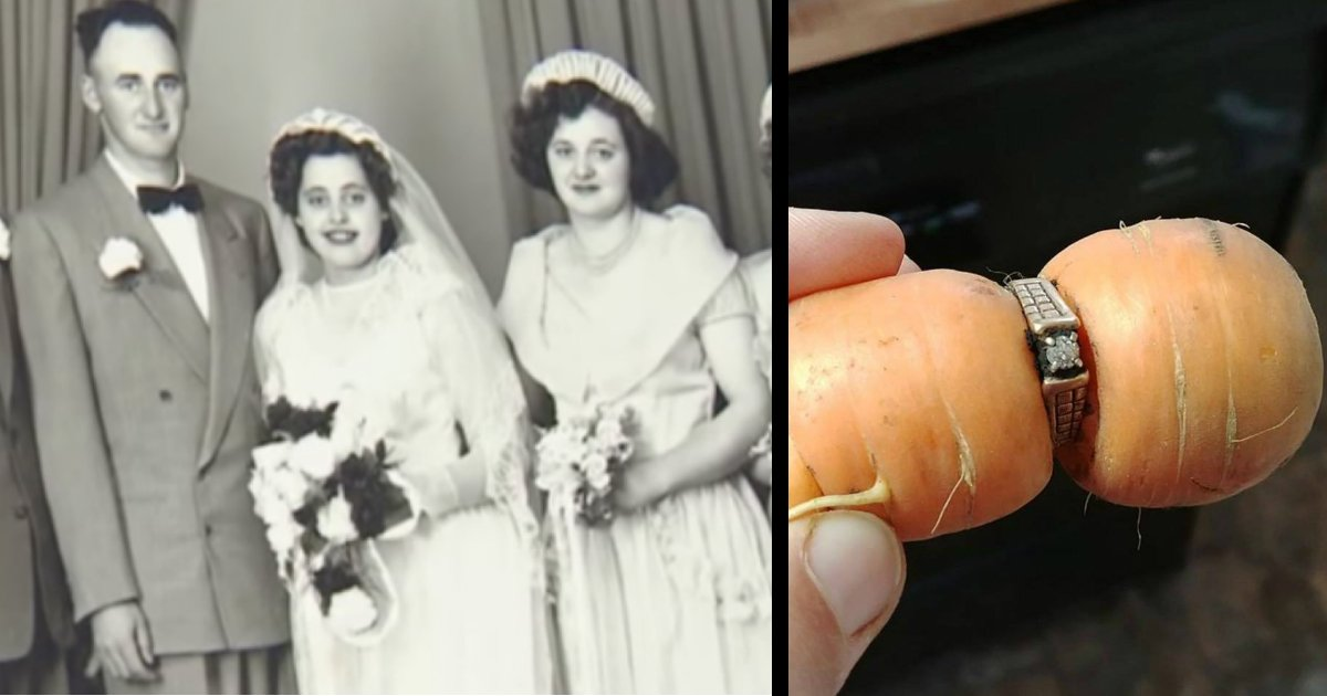 godupdates family finds carrot holding the engagement ring grandma lost 13 years ago fb