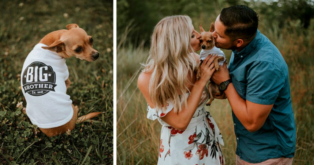 godupdates husband has best reaction to wife's surprise pregnancy annoucement 4