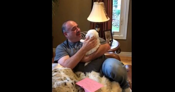 Grieving Dad Got A Surprise Letter and Now The Tears Are Flowing