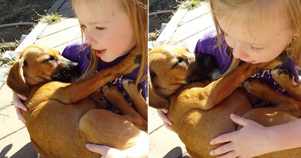Little Girl Sings Sweetest Lullaby To Her Rescue Puppy