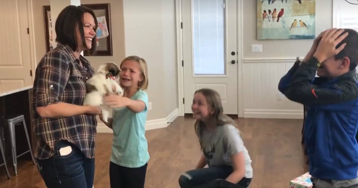 godpdates surprise puppy for christmas