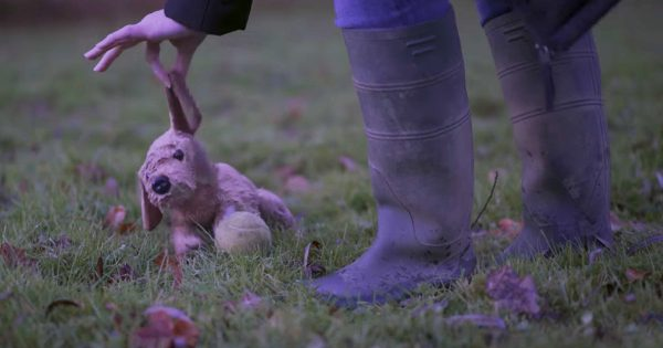 Heartbreaking Christmas Ad Reminds That Dogs Aren't Presents