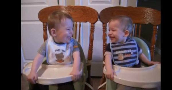 Twin Baby Boys Laugh At Each Other In Their Highchairs During Dinnertime