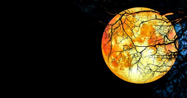 A Super Moon, Blood Moon And Lunar Eclipse All In One Night: Are You Ready?