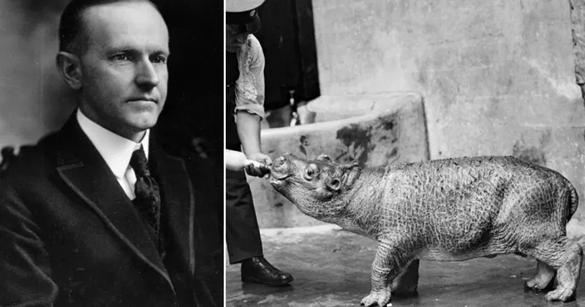 Bizarre Facts About U.S. Presidents That Sound Unbelievable But Are True _ Coolidge _ godupdates