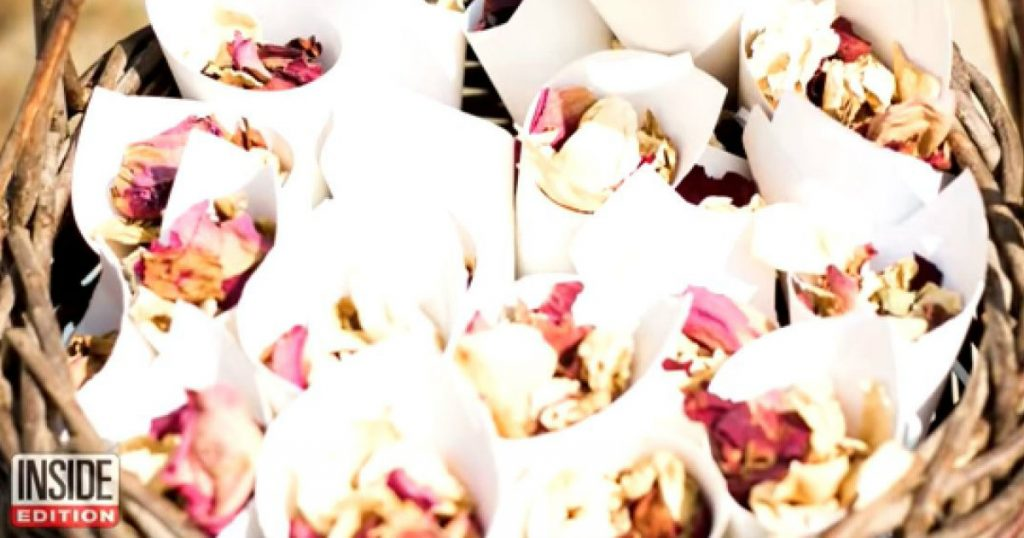 godupdates confetti rose petals