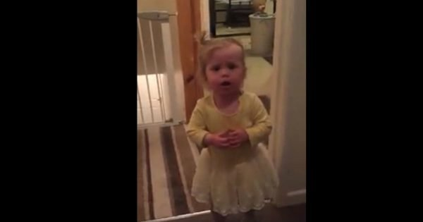 Hilarious Little Girl Says Yes To Everything