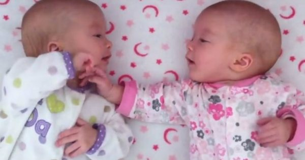 Identical Twin Sisters Interact For The Very First Time