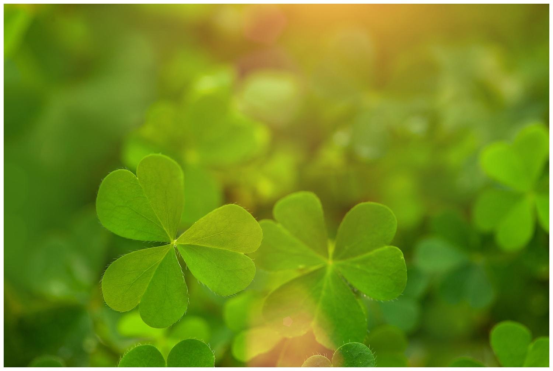 St Patrick's Day myths
