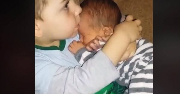 Video Compilation Of Older Siblings Meeting Their New Baby Siblings For The First Time