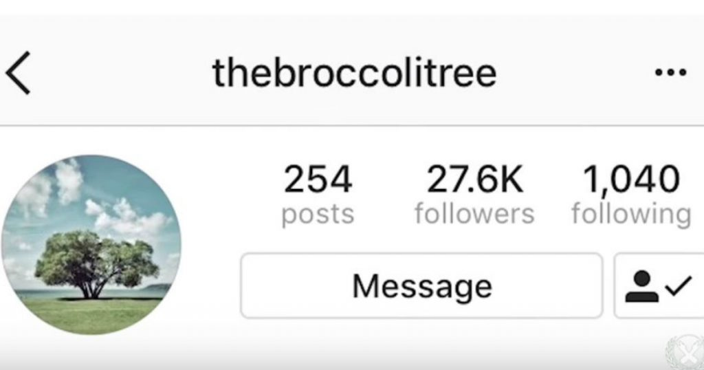 godupdates the broccoli tree