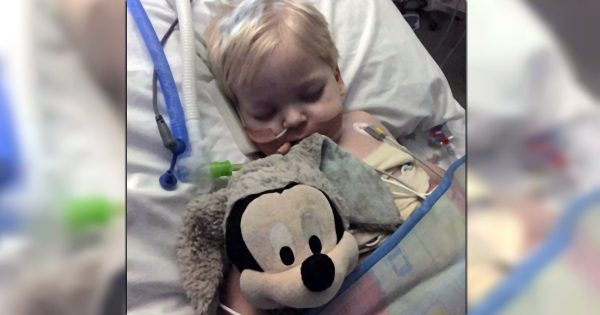 Heartbroken Parents Take 2-Year-Old Off Life Support And Then Get An Easter Miracle