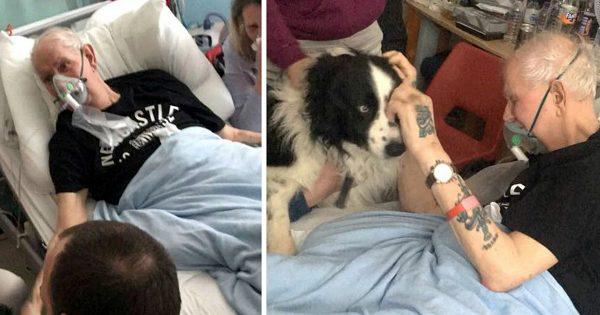Bed-Ridden Man Says Gut-Wrenching Goodbye To Beloved Dog In His Final Hours