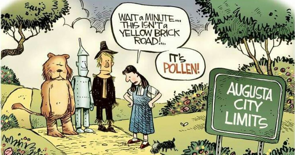 Pollen In The Air Phil Collins Parody Holderness Family