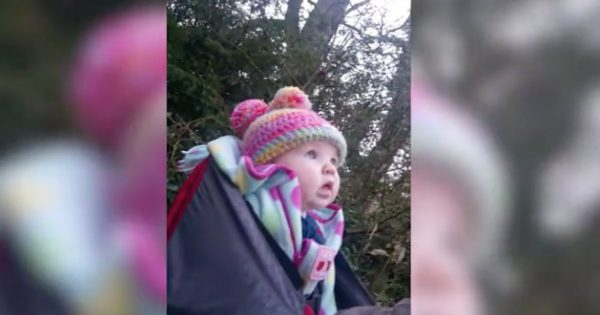 Baby Girl Is Astonished By Hearing Birds Singing For The Very First Time