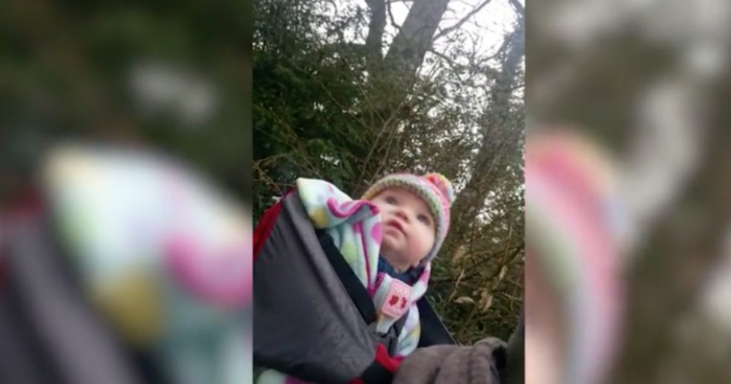 godupdates baby girl hears birdsongs