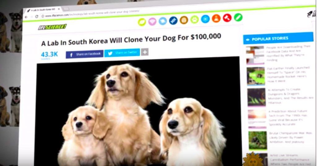 godupdates dog cloning