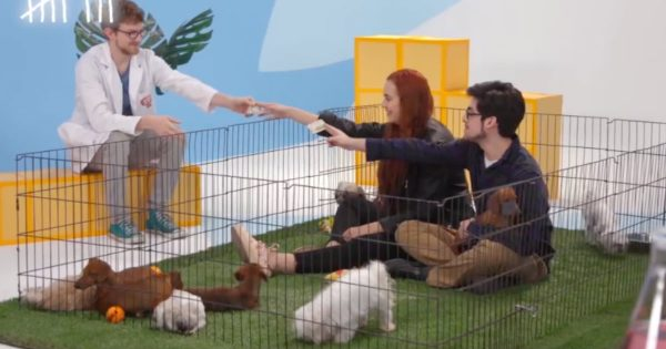 Puppies Teaches An Adorable Lesson About Being Generous