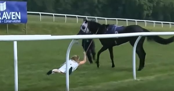 Reporter Is Nearly Trampled Stopping Loose Horse