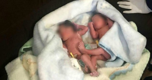Sound Of Puppies Crying Turns Out To Be Abandoned Newborn Twins