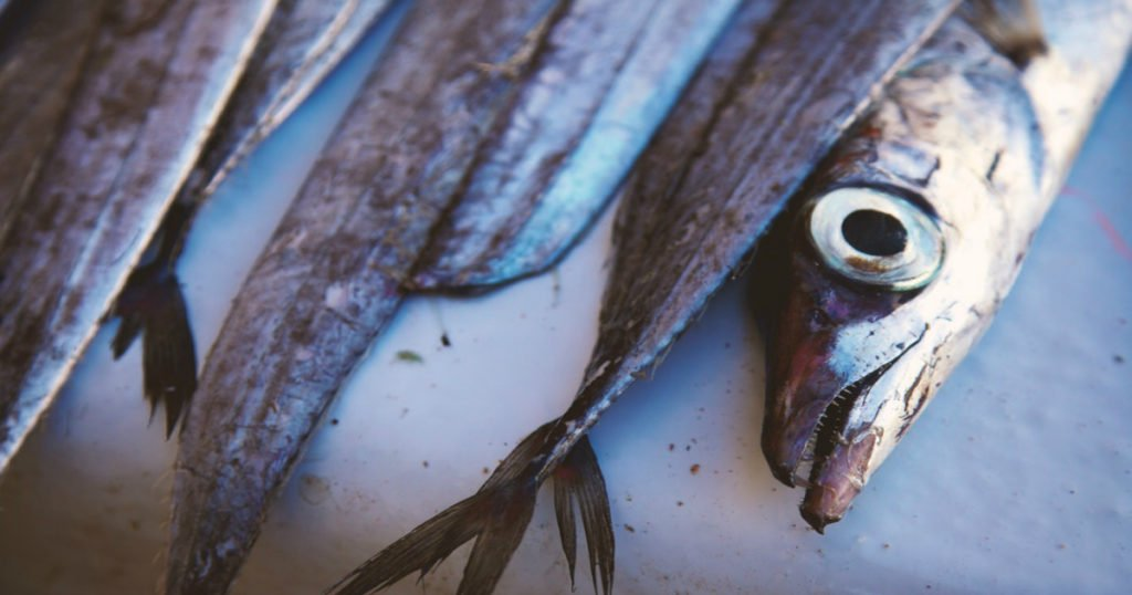 Fish Odor Syndrome: Folks With Bizarre Medical Problem Tell