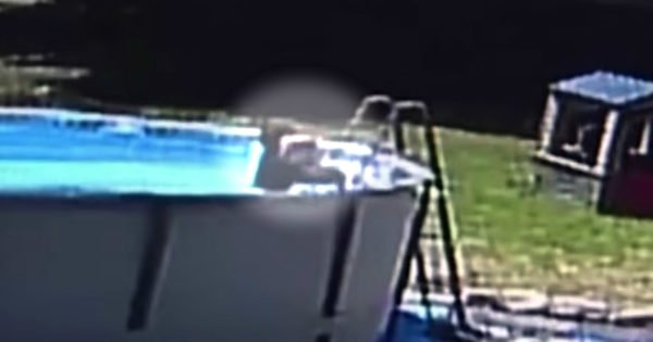 Parents' Close Calls Caught On Film Are Important Reminders Of Poolside Dangers