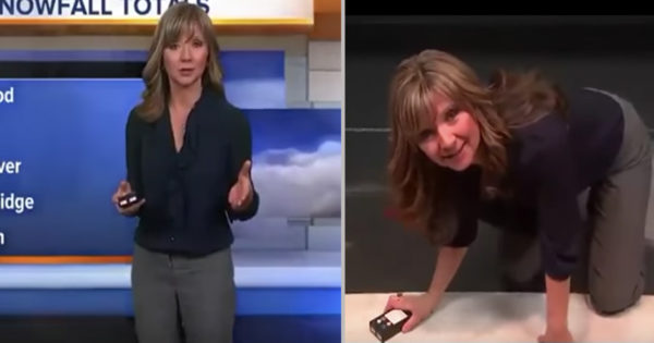 Weather Forecaster Hilariously Reacts in Viral News Blooper