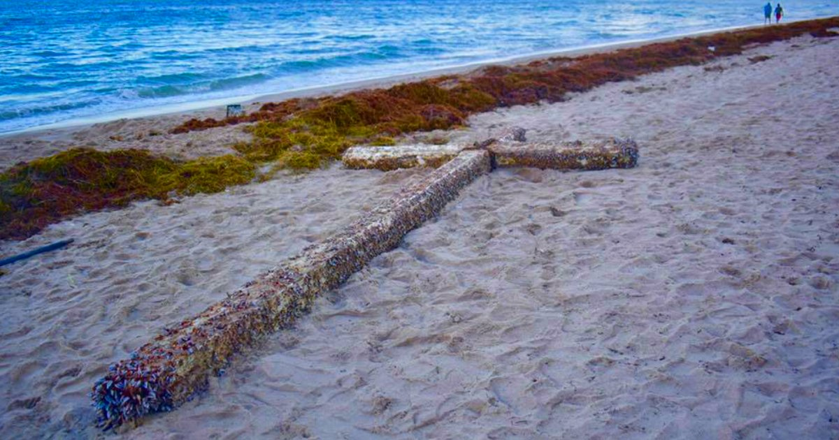 giant cross washed up on florida beach