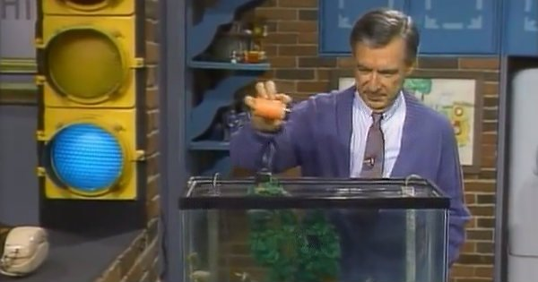 The Real Reason Mister Rogers 'Announced' When He Was Feeding the Fish