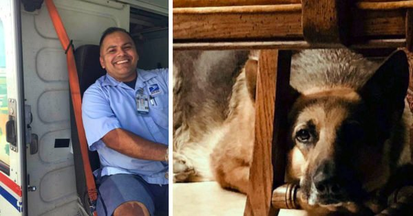 Dog And Mailman Friendship Ends In Heartbreak When Owner's Note Reveals Tragic News