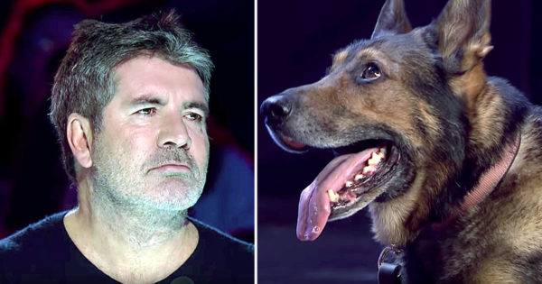 Simon Cowell Cried During Police Dog Audition And Here's The Story Behind Why