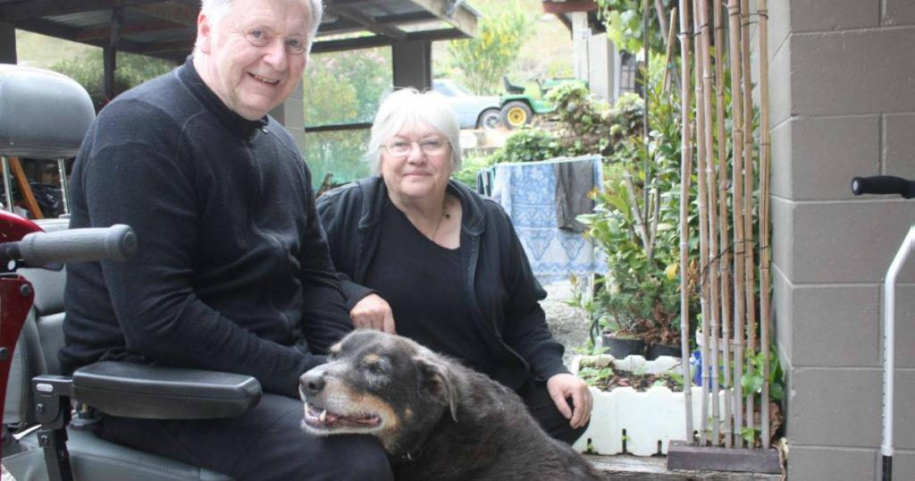 hero dog rescued neighbor sheepdog louie