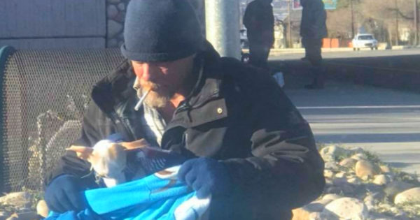 Abandoned Dog Up For Adoption In Utah After Homeless Man Comes To The Rescue