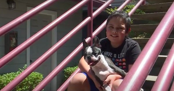dog and 11-year-old boy