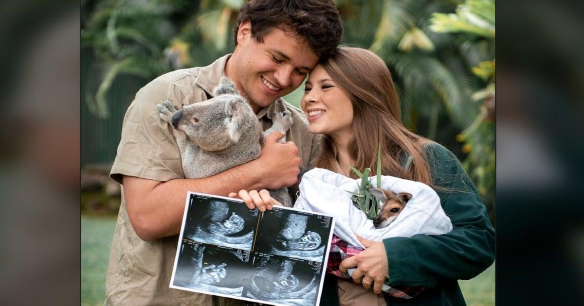 bindi irwin baby gender reveal