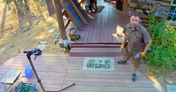 Grizzly Bear Charges, Barely Missing UPS Delivery Man, And Security Cameras Caught It All