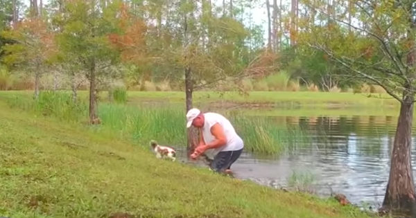 man wrestles alligator