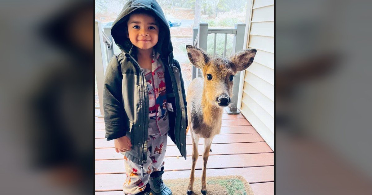 boy with deer dominic