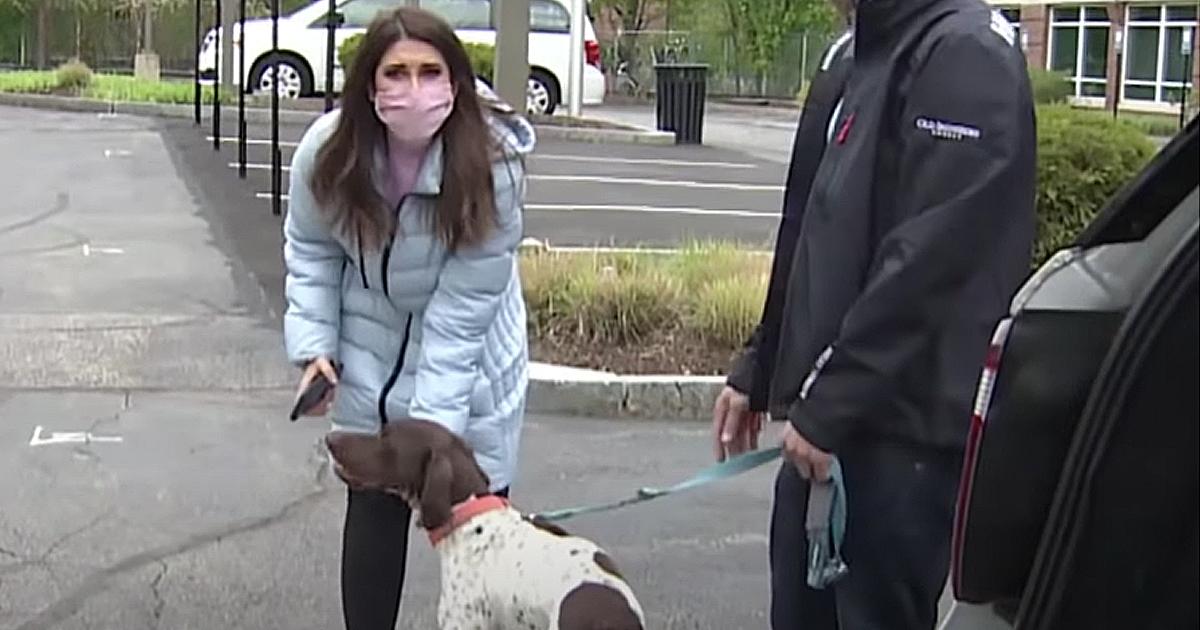 stolen dog found by news anchor