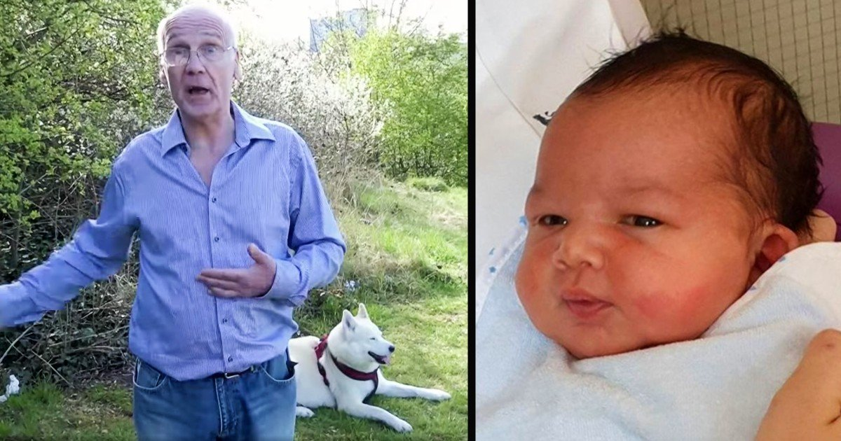 baby found in park by husky