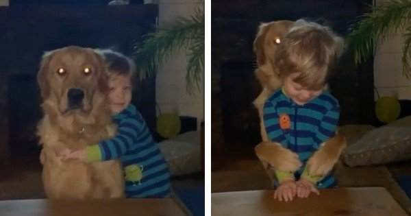 dog hugs boy