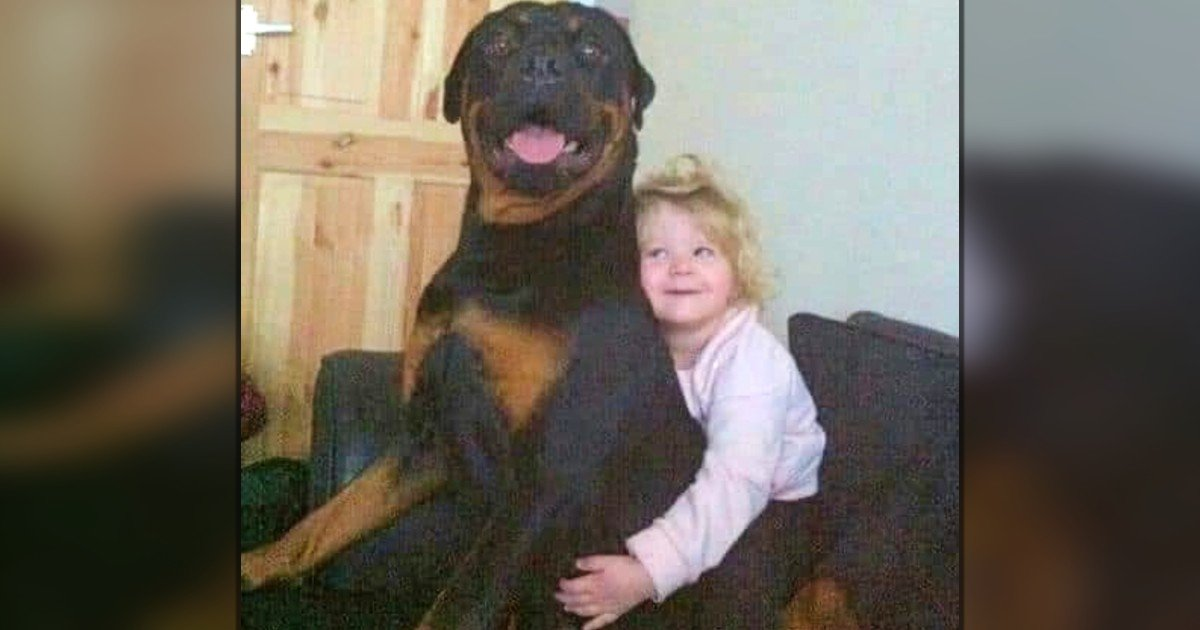 girl writes a letter to god after dog dies