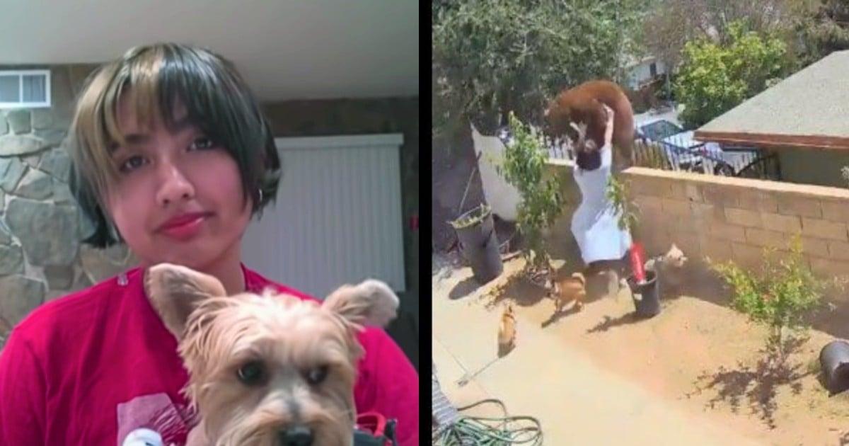teen pushes bear Hailey Morinico